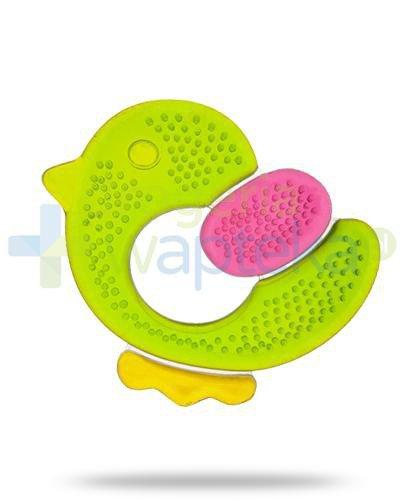 Canpol Babies Kurczak gryzak wodny dla dzieci 0+ 1 sztuka [74/021]