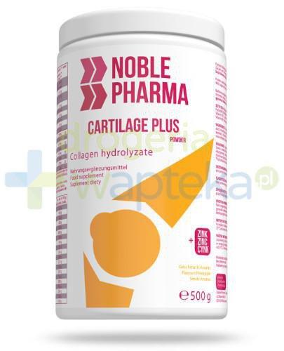 Noble Pharma Cartilage Plus ananas 500 g