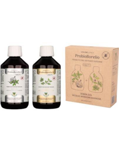 ProbioBorelio probiotyczne ekstrakty roślinne 2 x 300 ml
