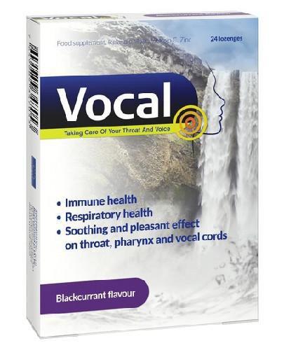 Vocal czarna porzeczka pastylki do ssania twarde 24 sztuki