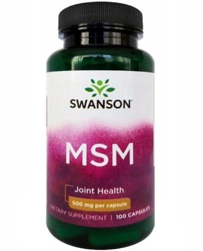 Swanson MSM 500mg 100 kapsułek