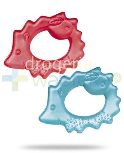 Canpol Babies Jeżyk gryzak wodny dla dzieci 0m+ 1 sztuka [2/008]