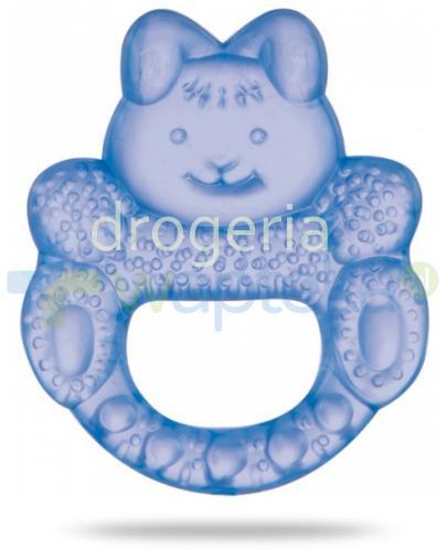 Canpol Babies gryzak wodny króliczek 1 sztuka [2/205]