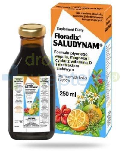 Floradix Saludynam wapń i magnez 250 ml