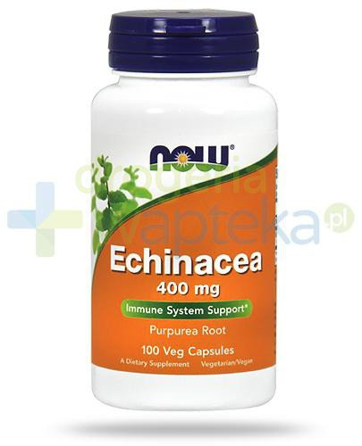 NOW Foods Echinacea 400mg 100 kapsułek vege