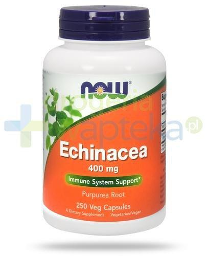 NOW Foods Echinacea 400mg 250 kapsułek vege